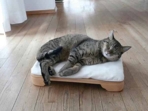 Minkas-Kachelofen - das elektrisch beheizte Katzenbett (MK-CN)